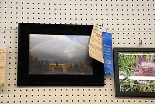 2008 08 Lincoln County Fair (40)