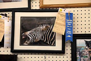 2008 08 Lincoln County Fair (56)