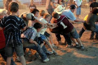 2008 08 Lincoln County Fair (185)