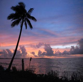 Sunsetradissonsquare