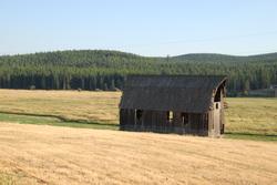 Amish_3